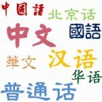 汉语中文国语